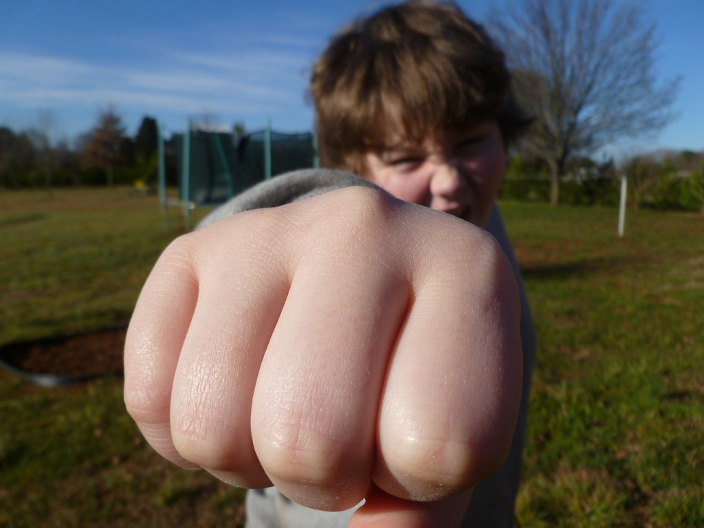 אודיל רוזנפלד | איך גורמים לילד להפסיק להרביץ? מנחת הורים בגישת אדלר